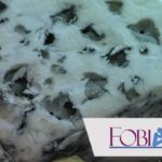 Turofobia: El sorprendente miedo al queso